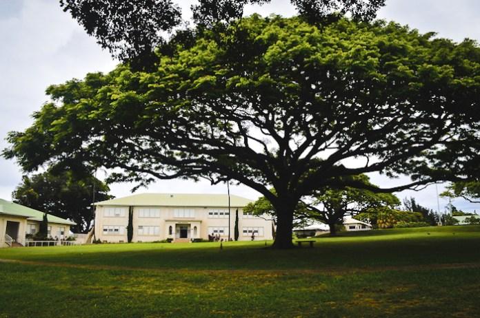 Maui public school