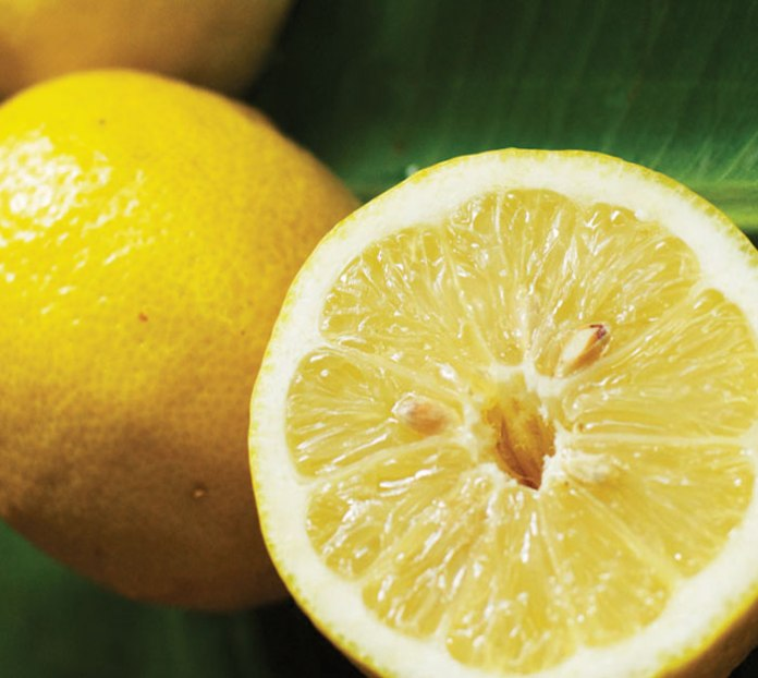 Lemons nutrition freeze benfits