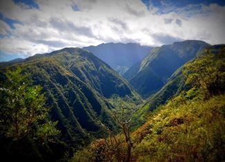 Waive Ridge Trail hikes Maui