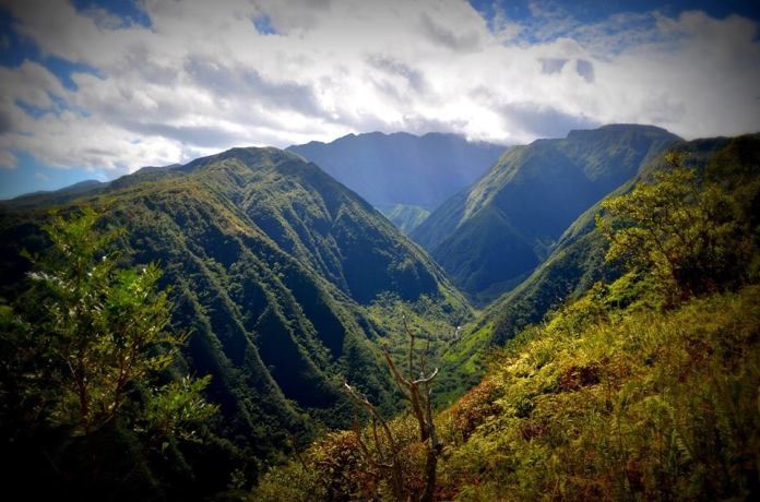 Waive Ridge Trail hikes Maui