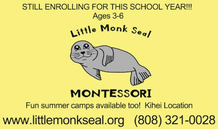 Little Monk Seal Montessori