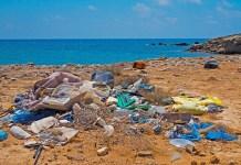 Maui plastic ban 2020