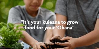 Maui Ohana Gardens Food security