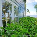 Window Cleaning Maui