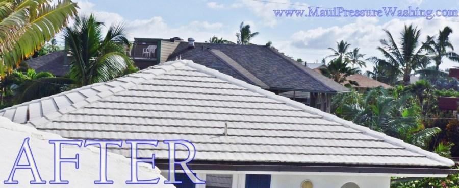 Clean Maui Roof
