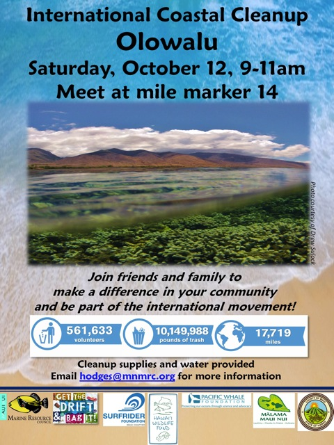2nd Olowalu Cleanup 2013 Flyer