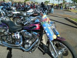 Maui Toys 4 Tots, in support of (15)