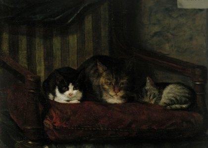 Adolf von Becker - Cachorros de Gato