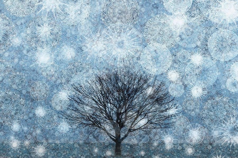 Winter Snow Storms Wallpaper Painting Artwork