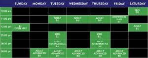 schedule week-jiu-jitsu-muay-thai