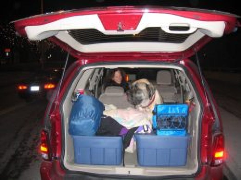 Midlife grounding with plenty of baggage -- and Lily, our 200 lb. English Mastiff