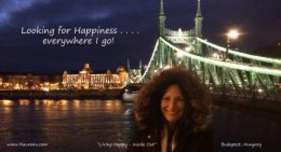 MS Budapest Bridge at night copy