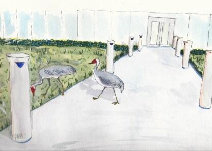 Sandhill Crane watercolor painting