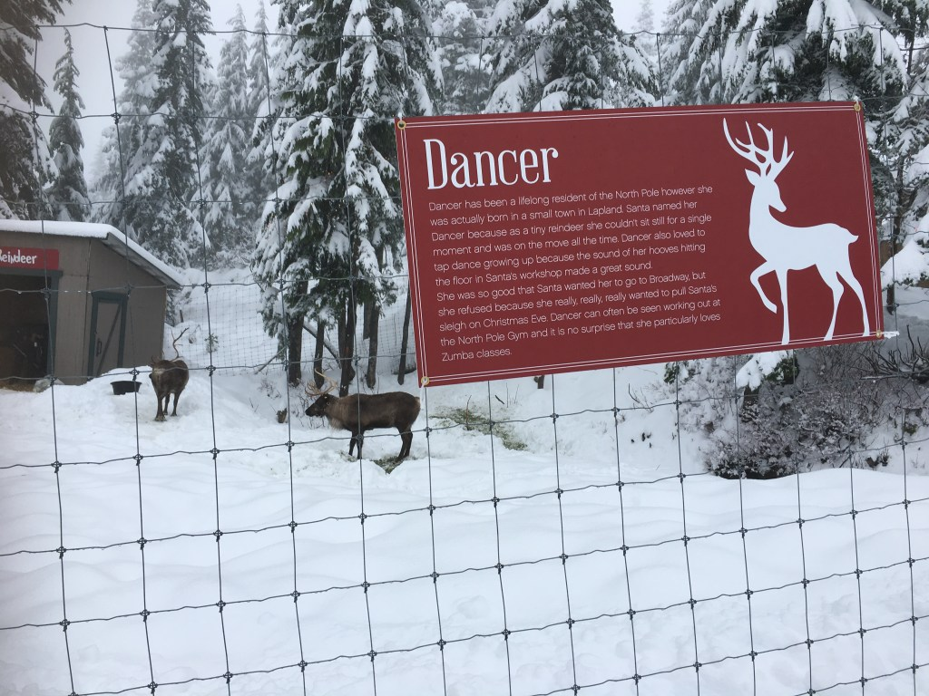 Even the reindeer are ready for the big night.