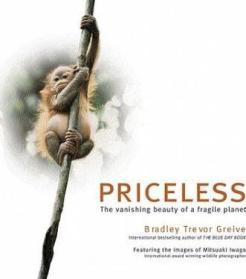 Sara Foster -- Priceless