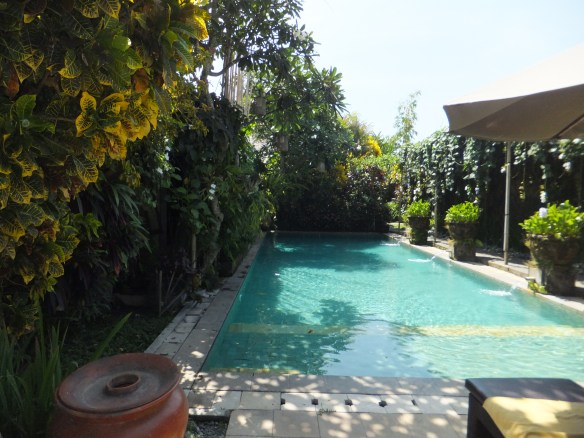 The pool near our bungalow in Ubud