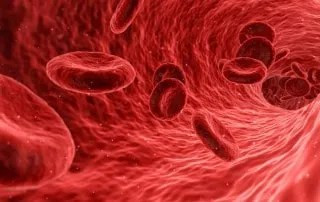 blood cells