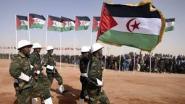 عزيز قبل بكونفدرالية بين موريتانيا والصحراء هذه معالمها