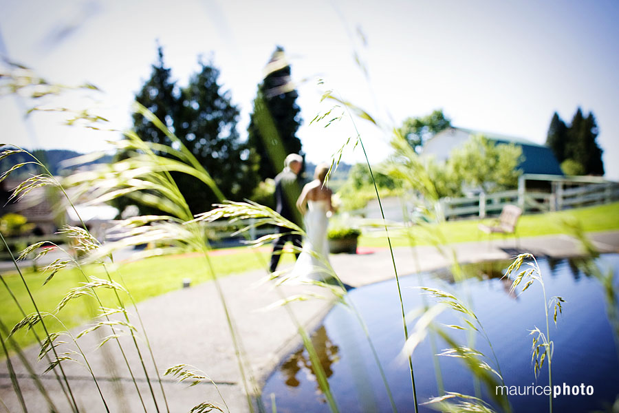 Wedding pictures at Delille Cellars in Woodinville