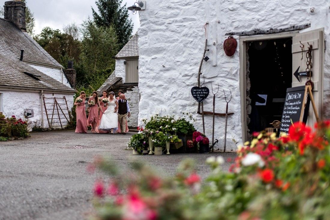 Hafod Farm Wedding - The bridal party