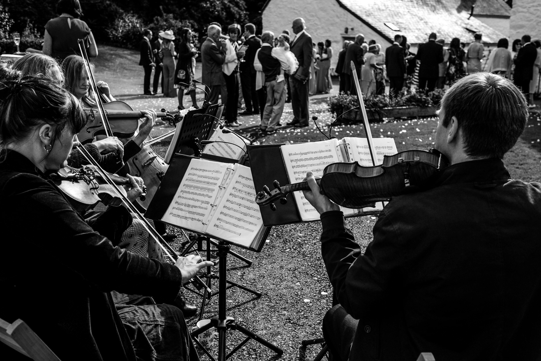 Conway wedding - The string quartet.