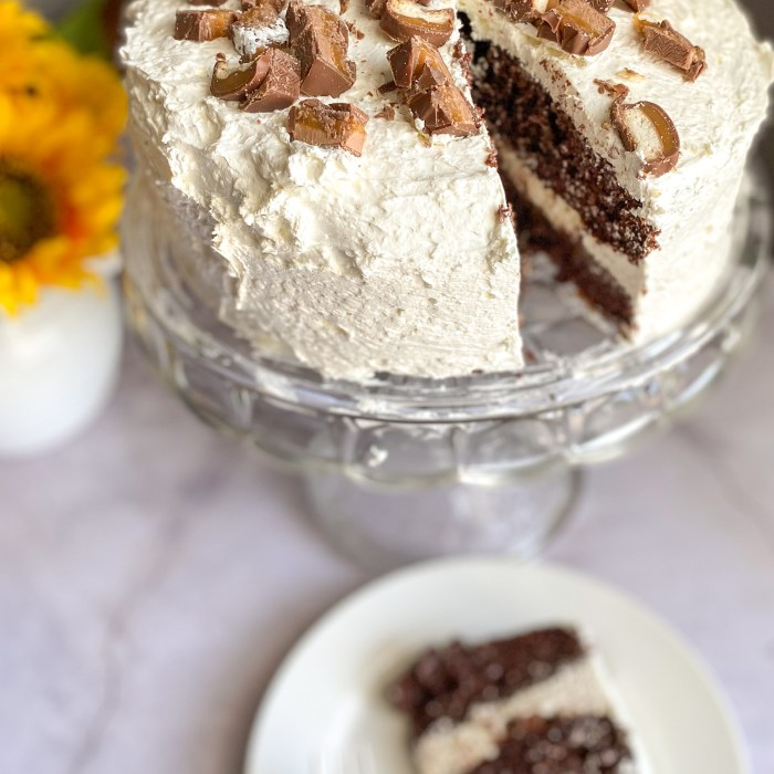 Chocolate Caramel Poke Cake Recipe