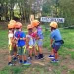 parco avventura attività pericolosa sentenza responsabilità parchi divertimento