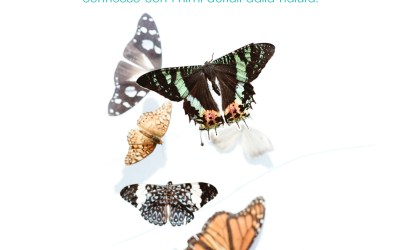 Naturopatia e Covid 19