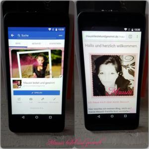 GS160 Internet und Facebook