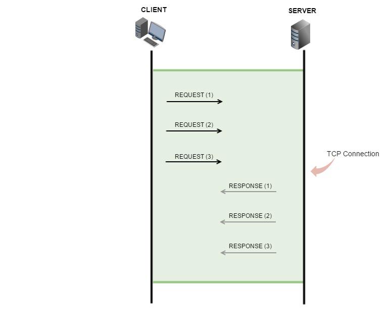 network_3 (1)