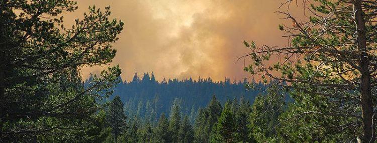 Angora Fire WikiMedia