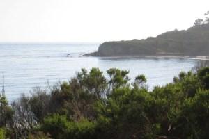 Refugio Beach #7 June 2009