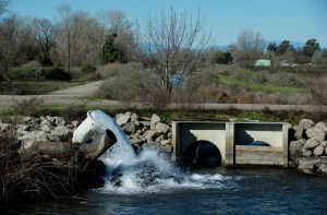 Gray Lodge Wildlife Area in Gridley has groundwater wells that are pumping water to flood fields and supply water for waterfowl.