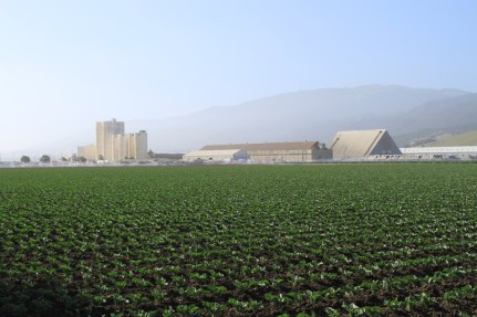 Salinas Valley agriculture May 2012 #15