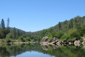 American River #3