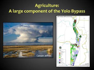 Yolo Bypass BB_Page_12