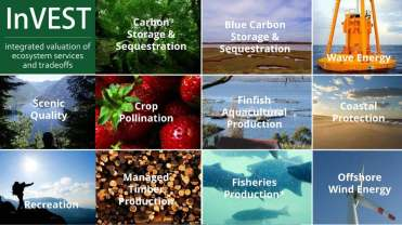 BB Eco Services Bryant PPT_Page_06