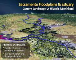 MWD Yolo Bypass PPT_Page_07
