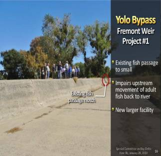 MWD Yolo Bypass PPT_Page_16