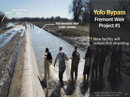 MWD Yolo Bypass PPT_Page_17