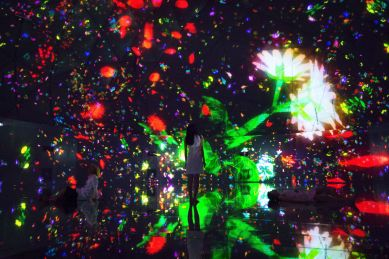 teamlab-dmm-planets-world-of-wonders-7