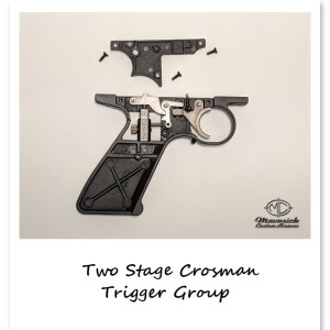 Match Grade Two-Stage Trigger Group