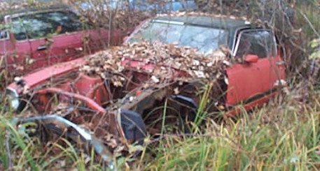 his car features bucket seats, weeds, sport mirrors, trees, and a vinyl top.