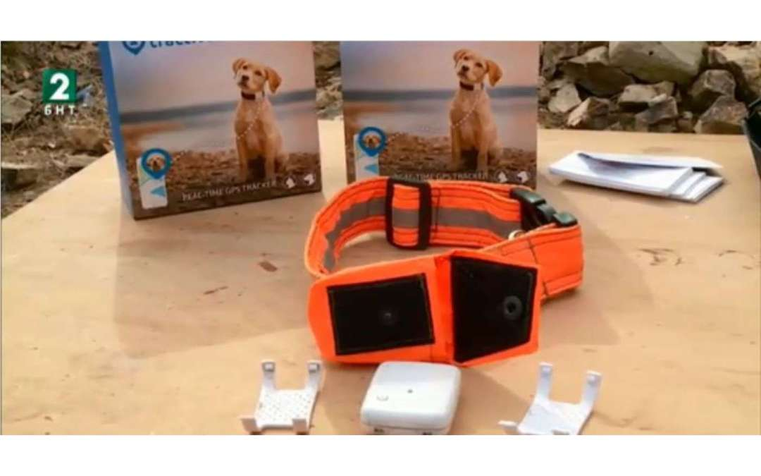 Най-добрите проследяващи устройства за ловни кучета