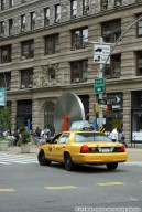Sculptures d'Alexandre Arrechea - NYC   Mon chat m'a ramené un chipmunk !