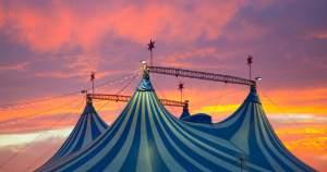 Поездка в цирк