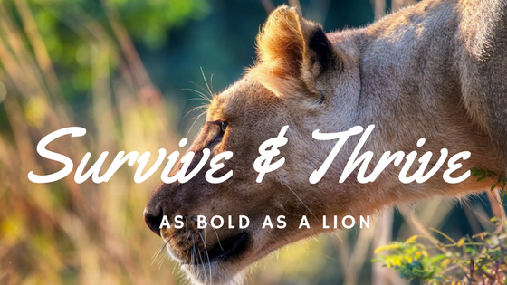 Survive & Thrive - The Righteous are as Bold as a Lion