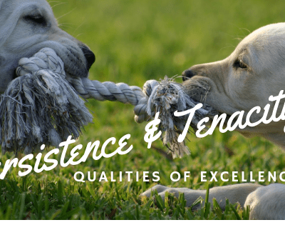 Persistence and Tenacity, Qualities Necessary for Excellence
