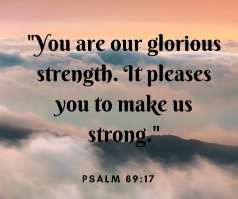 Psalm 89:17