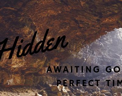 Hidden, Awaiting God's Perfect Time